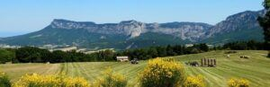 French-Agriculture-Landscape